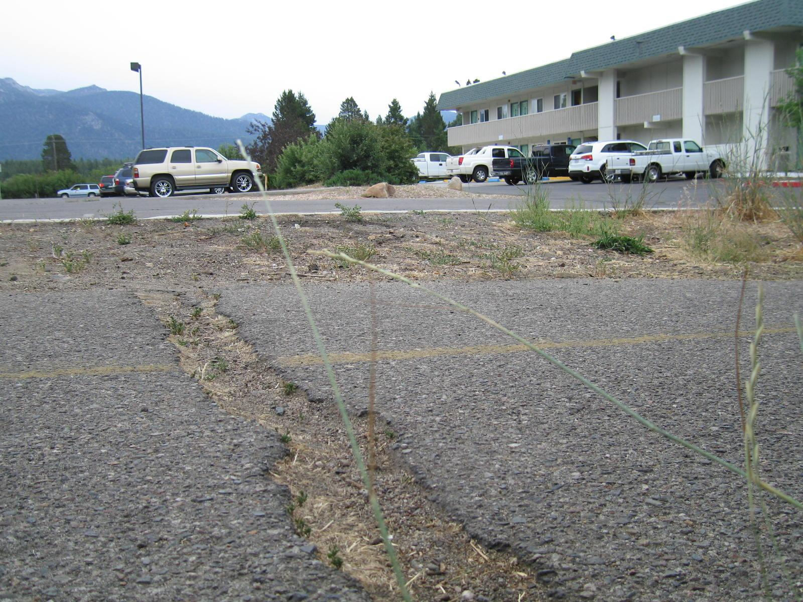 Large crack in road behind Motel 6