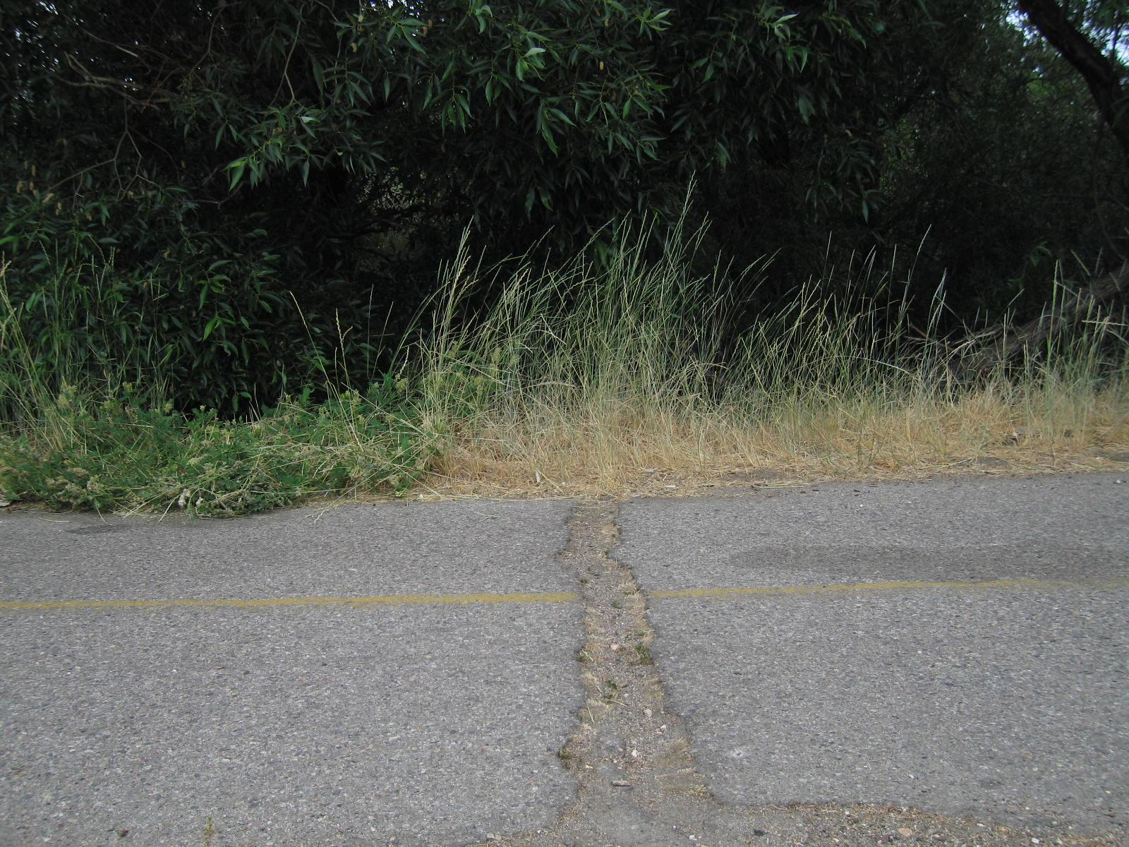 Crack in road Behind Motel 6
