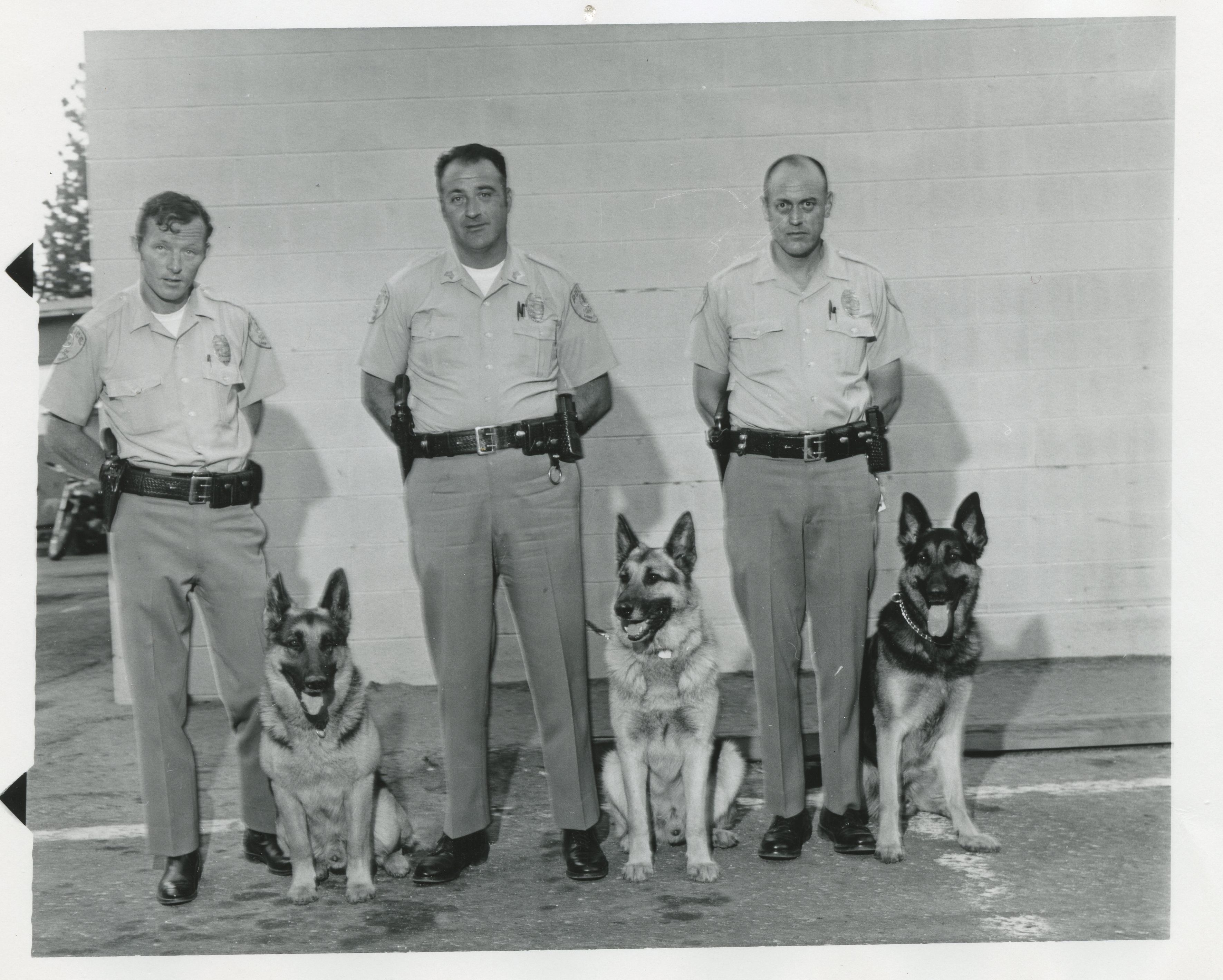 1970 SLTPD K9 Unit.jpg